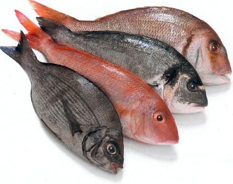 ikan-segar