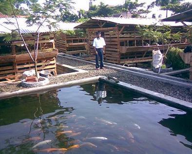 Zona_ik@n | it's all about fishery | Laman 23